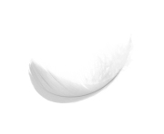 1495816578simple-white-feaher-png